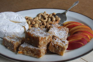 Alison Holst's apricot slice